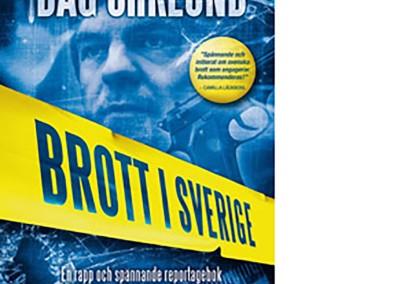 Brott i Sverige – 2011